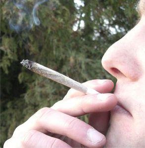 marijuana chicago